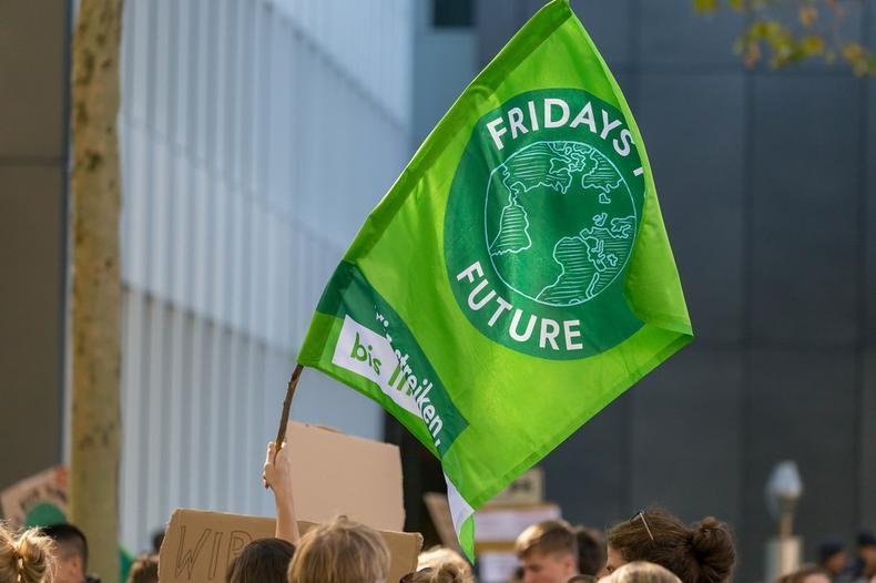 fridays for future flag